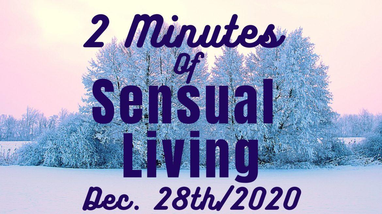 2 minute guided meditation, sensual life coaching, erotic audio, audio porn, mature female voiceover, custom audio, sexy MP3
